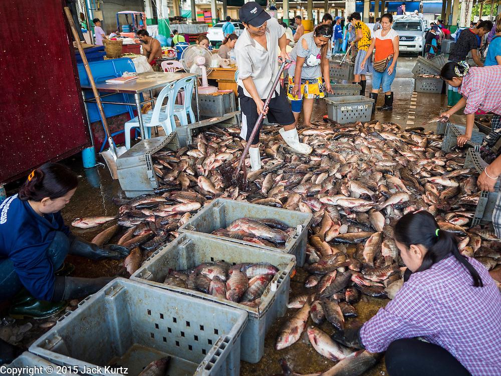 Saphan pla fish market in bangkok jack kurtz for Wholesale fish market
