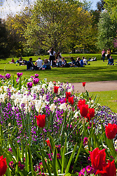 London, April 25th 2015. Despite the threat of forecasted showers, spring sunshine and warmth greets Londoners as they enjoy the Royal Parks in the capital. PICTURED: Picnics and weekend relaxation in the sunshine as flowerbeds in Hyde Park blossom.