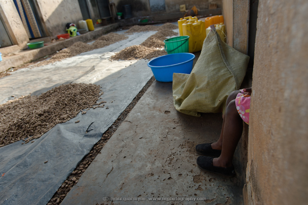 Farida Bikobere's legs are seen poking out of a doorway at her home near Tororo, Uganda on 2 August 2014. In the courtyard are piles of groundnuts, which are being dried after harvest.