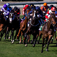 13-1101 Breeders Cup Day 1