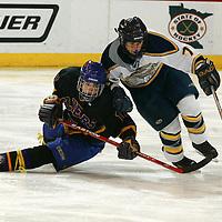 MN State Hockey 2006..Class A 3rd..Hermantown- Little Falls