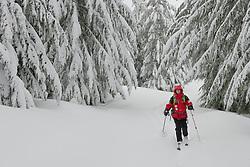 A lone ski patroller skis a grommed trail on the Mount Tahoma Trails near Mount Rainier in the Washington state Cascade Mountain Range.