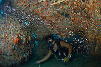 Diver in Reef Cavern with Sweepers