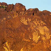 Ancient petroglyphs pecked into the stone by long-vanished Anasazi / Ancestral Puebloan people.