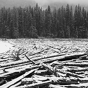 Duffy Lake at winter.  Log jam at the east end of Duffy Lake in winter.