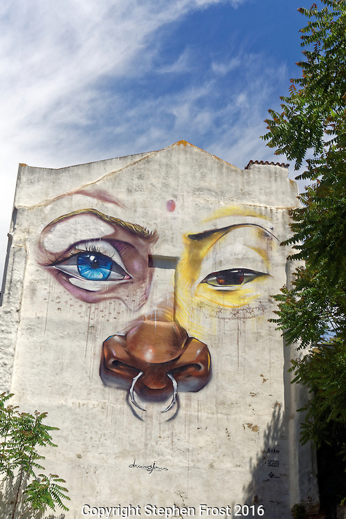 Wall art on a house in Lisbon Portugal. Original artist not known.