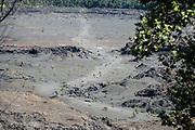 The walkable pit crater of Kilauea Iki (adjacent to the larger caldera of Kilauea) is still warm after last erupting in 1959, in Hawaii Volcanoes National Park, on the Big Island, Hawaii, USA. Rainwater seeping into cracks contacts hot rock below forming steam which leaves white mineral residue above. Established in 1916 and later expanded, the park (HVNP) encompasses two active volcanoes: Kilauea, one of the world's most active volcanoes, and Mauna Loa, the world's most massive shield volcano. HVNP is honored as a UNESCO World Heritage Site and International Biosphere Reserve.