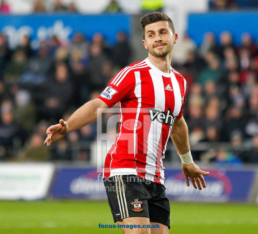 Shane Long celebrates the first goal of Southampton during the Barclays Premier League match at the Liberty Stadium, Swansea<br /> Picture by Mike Griffiths/Focus Images Ltd +44 7766 223933<br /> 13/02/2016