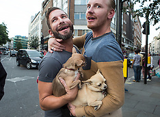 JUN 27 2014 Gay men holds Chihuahua dogs in Covent Garden area