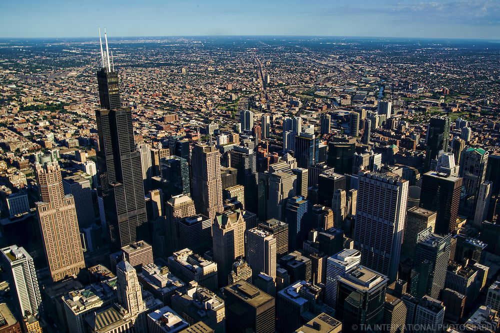 Chicago Skyline featuring Willis Tower