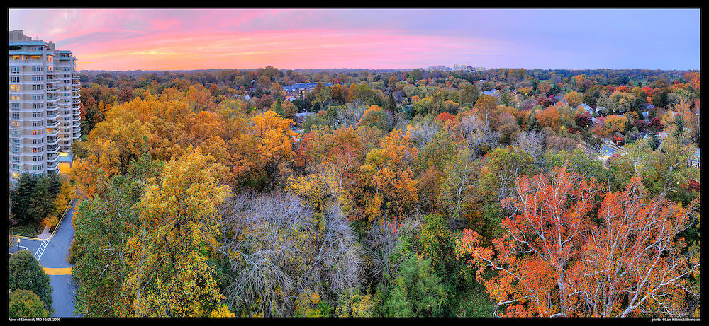Panoramic photograph of Fall color in Chevy Chase, Maryland and Sommerset Village  with View of Bethesda, Mayland in distance.  Print Size (in inches): 15x7; 24x11; 36x16; 48x22; 60x27.5; 72x33.