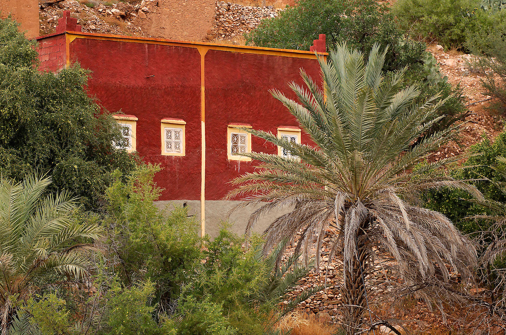 house and palm in Oumesnate, Ameln Valley near Tafraoute, Morocco