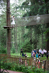Martin Milner and Colette Gregory tying the knot in the trees at Go Ape Aberfoyle. Colette heading up to walk to the platform for the wedding vows.