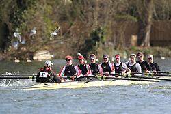 2012.02.25 Reading University Head 2012. The River Thames. Division 1. Thames Rowing Club B W.IM2 8+