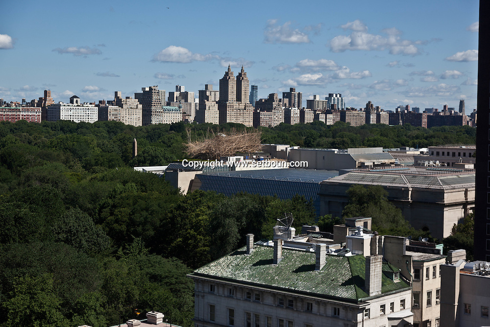 New York. Manhattan cityscape and central park, New York - United states / panorama de manhattan  New York - Etats unis