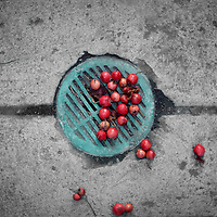 A seasoned verdigris sidewalk drain with red berries in the fall.