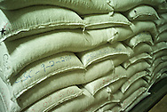 Coffee depot caffeine, Coffea canephora, cultivated, flavor, chaoua, kahve, robusta, Rubiaceae, Coffea arabica, coffee cultivation, process, flavor, aroma, Commodity, fresh produce, Coffee futures contracts, industry, economy,