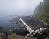 Coastal Images, Environmental, Commerce, Leisure, Vacation, Fine Art