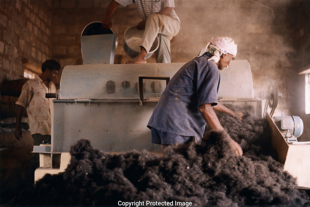 1st Nov 2006.  Much of the hair trade, like many Indian industries, is carried on in very poor conditions. Hair from barbers shops is swept up, sent to the hair processing factories and chopped into tiny pieces. It is then sent to chemical companies who extract the amino acids to use them in food and medicine. The workers who operate the chopping machine work without masks or gloves or any other form of protection. Some of the work places are relatively light and airy, others gloomy and ill ventilated. One firms sorting takes place in a basement room and the workers are locked in. While long hair from temples is often clean and sleek, village hair and barbers hair is dirty and small, the small pieces blow about, getting under the workers clothes and into their mouths. Workers are paid approximately 25 rupees (30p) for an eight and a half hour day.