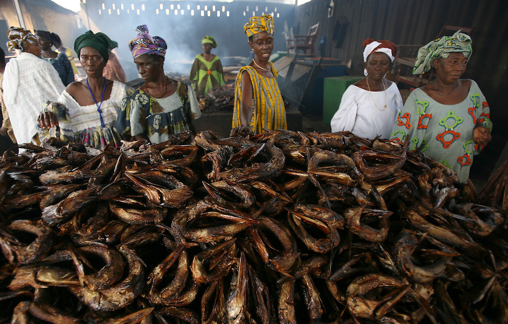 Fishing In Conakry Guinea West Africa Commercial