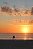 2011 indian Shores, Florida. USA