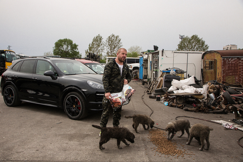 Dinko Valev's junkyard in Yambol, Bulgaria. Valev feeds some of the dogs living on the property.<br /> <br /> Matt Lutton / Boreal Collective for VICE