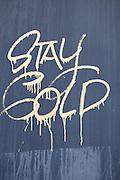 """graffiti in Florida : """"stay cold"""""""