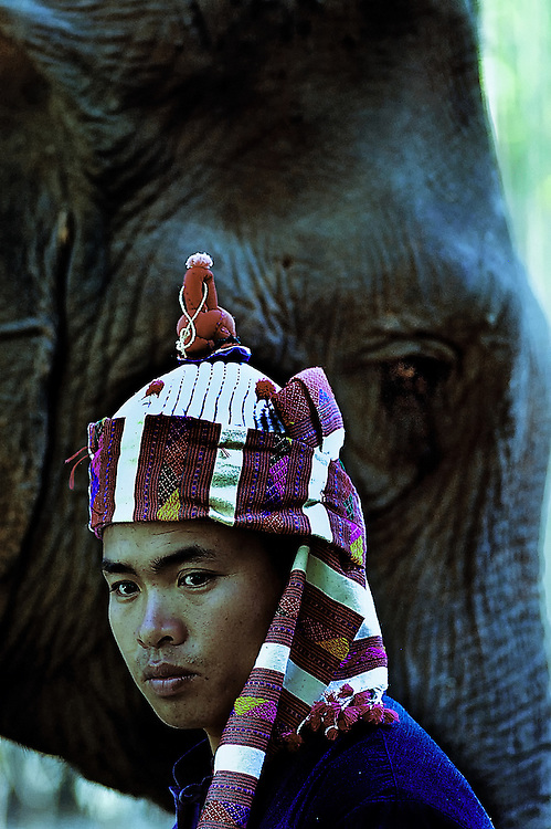 A mahout with his elephant during the Elephant Festival, Laos