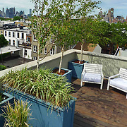 Brooklyn roof terrace in Carol garden with New Ypur City view. Roofdeck design is designed by Outside Space NYC landscape design company