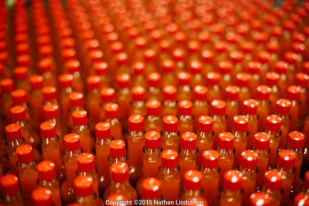 Bottles of tabasco sauce in the Tabasco factory on Avery Island, LA where Tabasco sauce has been made by the McIlhenny Company since 1868.<br /> by commercial photographer Nathan Lindstrom