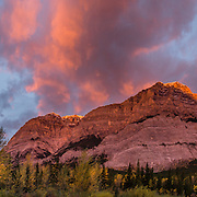Sunrise illuminates Mount Kidd in the Kananaskis Range of the Canadian Rockies, in Kananaskis Country, Alberta. Access the Mt Kidd Interpretive Trail from Mt Kidd RV Park. Kananaskis Country is a park system west of Calgary. This panorama was stitched from 5 overlapping photos.