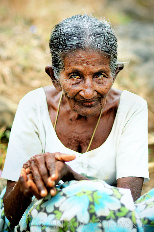 Sri Lanka, Dambulla. Portrait of a beautiful elderly lady.