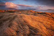 Strong winds and inclement weather sweep over the huge sand dunes at Llanddwyn, Anglesey. The sunset provided bursts of sunshine over this Marram Grass strewn landscape.
