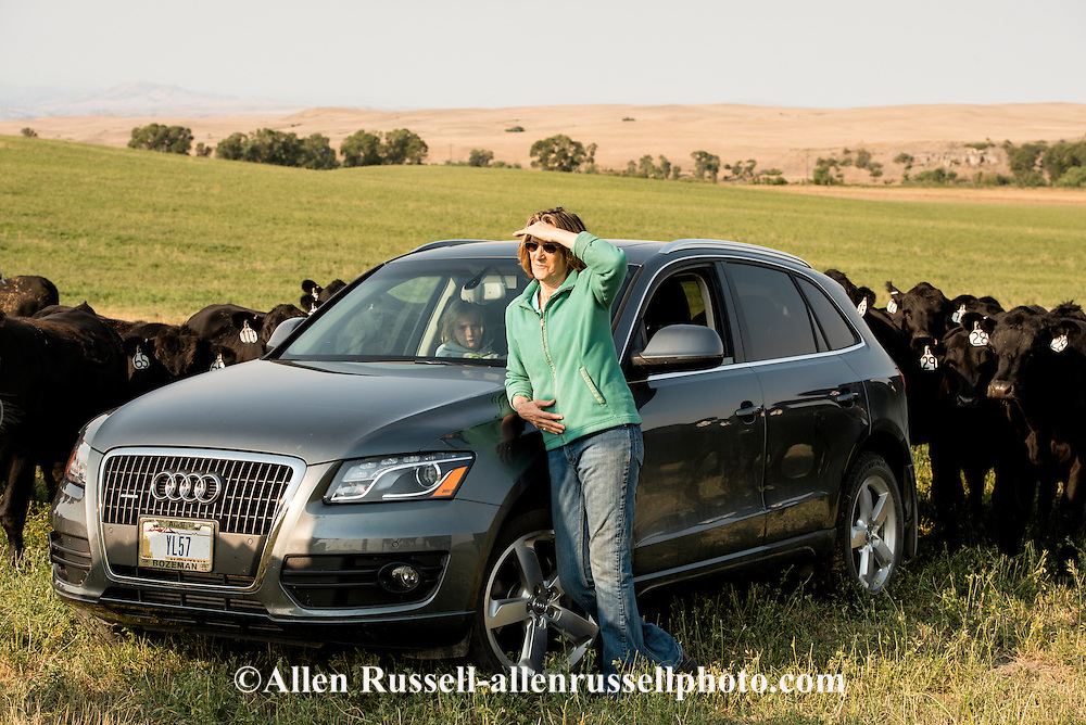 Woman, rancher, Black Angus cattle, ranch, Montana.