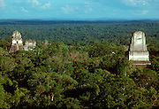 GUATEMALA, MAYA, TIKAL Temples #1, #2 and #4 above jungle