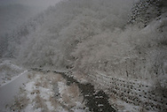 Snowstorm intensifies in the high country of the Kitakami Mountains that rise out of rocky coastline along the Pacific Ocean.  Iwate Prefecture, Japan.