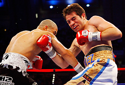 April 12, 2008; Atlantic City, NJ, USA;  Miguel Cotto (Black w/Gray) and Alfonso Gomez (White, Blue & Gold) trade punches during their 12 round WBA Welterweight Championship fight at Boardwalk Hall in Atlantic City, NJ.