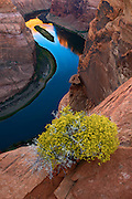 The Colorado River meanders beneath the cliffs of Horseshoe Bend near Page, Arizona.