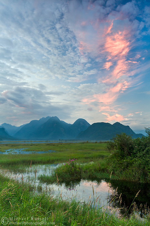 Sunset over the Coast Mountains at the Pitt-Addington Marsh Wildlife Management Area on the shore of the Pitt River in Pitt Meadows, British Columbia, Canada