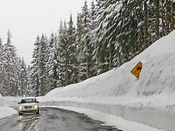 slippery road sign sticking out of deep snow along the road to Paradise in Mount Rainier National Park, Washington, USA