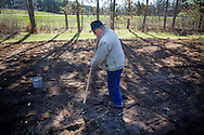 2011- Jerry Apps working in his Waushara County garden.