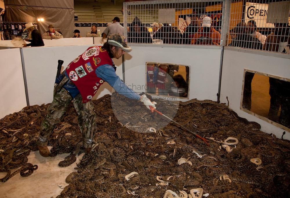 Rattlesnake Roundup Sweetwater tx 5024x3436 4 3mb Rattlesnake Sweetwater Texas Roundup Snake Snakes