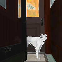 Dog in the vestibule of a townhouse