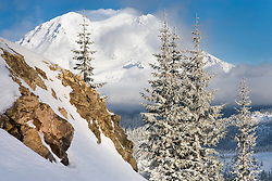 Mount Rainier viewed from the Puyallup Ridge Trail of the Mount Tahoma Trails west of Mt Rainier in the Washington state Cascade Range,