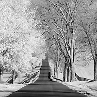 Infrared (IR) photograph of a rural street in Central Kentucky in Fall.  The street was lined with bare trees on one side and trees with all of their leaves on the other.  The scene was photographed using a camera modified to be sensitive to the infrared spectrum of light.  Fine art photography by Michael Kloth.