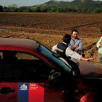 WILSON ROJAS DONOSO, USUARIO INDAP. CULTIVO DE CEBOLLAS. SEXTA REGION DE OHIGGINS. 16-10-2013 (©Alvaro de la Fuente/Triple.cl)