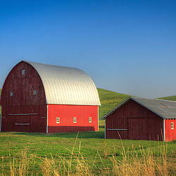 Shoot/Week 26: Palouse