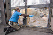 Stephanie Green, Zoo Keeper of Polar Bears and Sea Lions