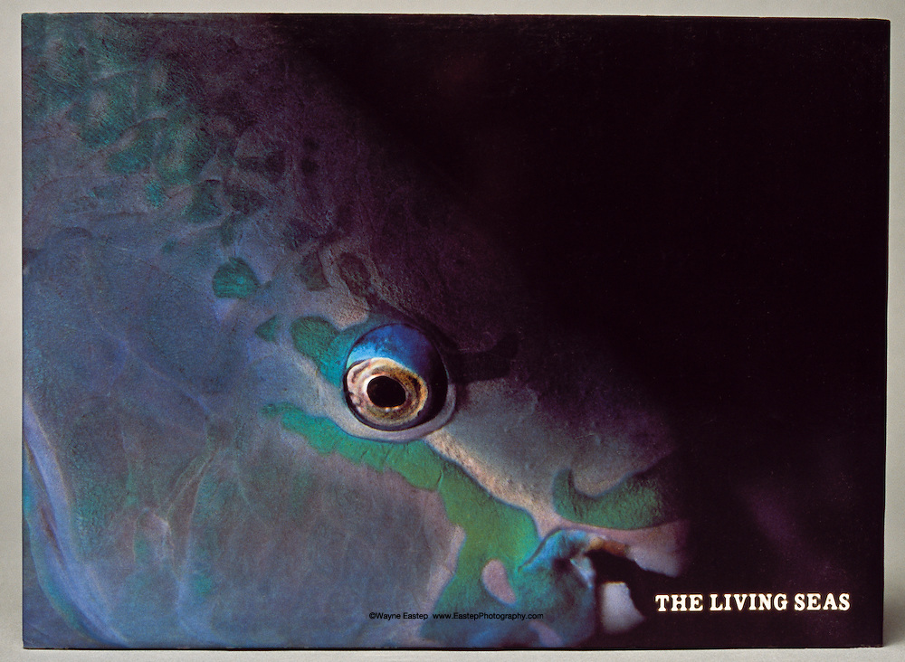 The Living Seas book cover with Queen Parrotfish