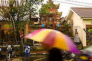 Tourist with umbrella in the rain in Ubud. Bali revisited January 2012.